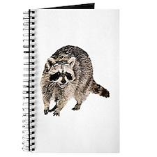 Racoon Plain Journal