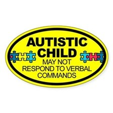 Autism Child Car Decal Bumper Stickers