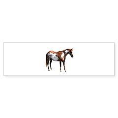 Pinto horse Sticker (Bumper 10 pk)