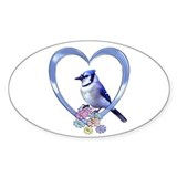 Birds blue jays 10 Pack