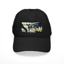 Greater Kudu Baseball Hat