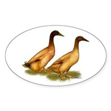 Khaki Campbell Duck Pair Bumper Stickers