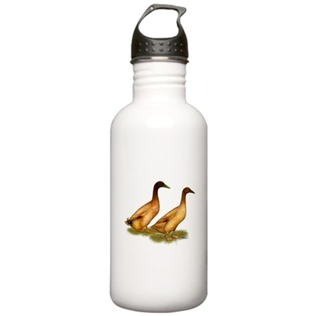 Khaki Campbell Duck Pair Stainless Water Bottle 1.
