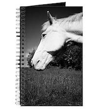 whitehorse01 Journal