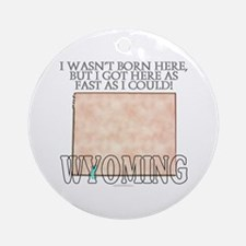 Got here fast! Wyoming Ornament (Round)