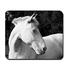 whitehorse03 Mousepad