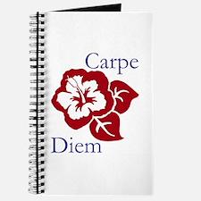 Carpe Diem Journal