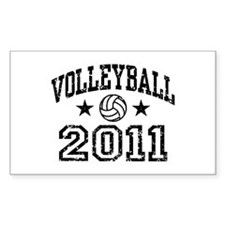 Volleyball 2011 Decal