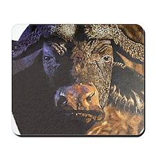 Cape Buffalo Mousepad