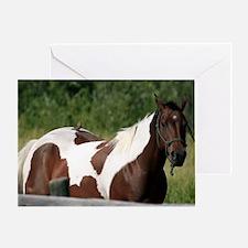 Bird riding horse Greeting Card