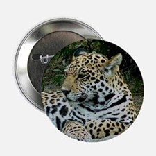Jaguar Portrait Button