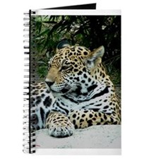 Jaguar Portrait Journal