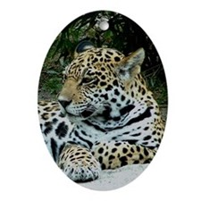 Jaguar Portrait Oval Ornament