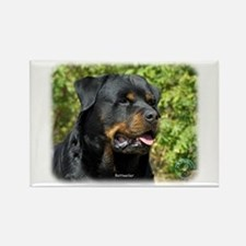 Rottweiler 9R047D-052 Rectangle Magnet