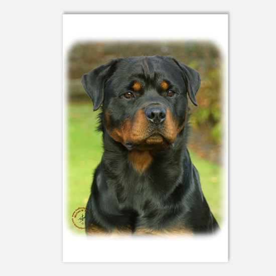 Rottweiler 9W044D-073 Postcards (Package of 8)