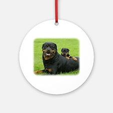 Rottweiler 9W025D-081 Ornament (Round)