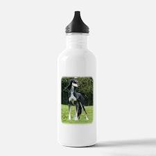 Saluki 8R012D-14 Sports Water Bottle