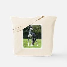 Saluki 8R012D-14 Tote Bag