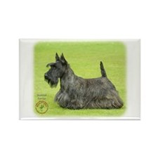 Scottish Terrier 9A036D-07 Rectangle Magnet (100 p