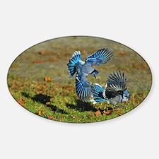 2 Blue Jays Decal