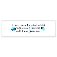 Julie's Quote Bumper Sticker