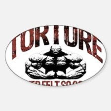 TORTURE FEELS GOOD Decal