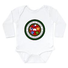 Unique An gaeilge Long Sleeve Infant Bodysuit