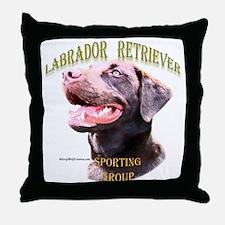 Lab 1 Throw Pillow