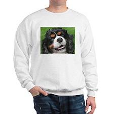 Cavalier Sweatshirt