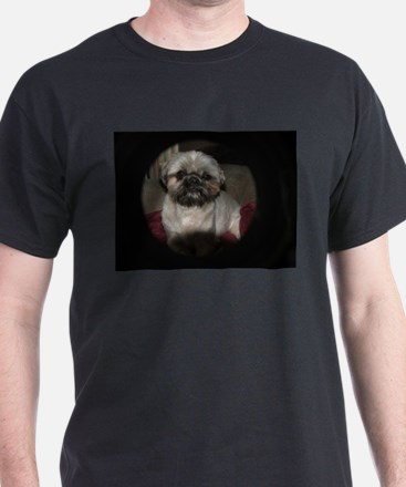 mai tai pet shihtzu T-Shirt