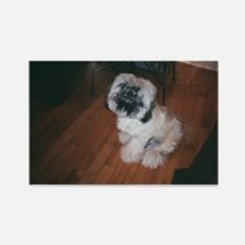 maitai shihtzu Rectangle Magnet