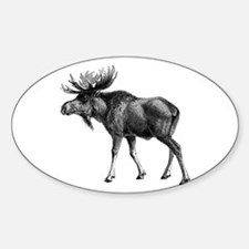 Moose drawing Decal