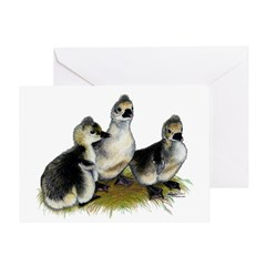 Tufted Toulouse Goslings Greeting Card