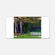 Bench in the Forest Aluminum License Plate