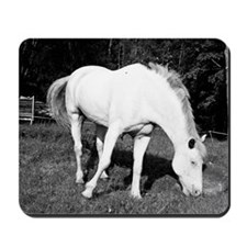 WhiteHorse02 Mousepad