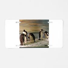 Penguins Aluminum License Plate
