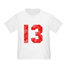 13th Birthday T