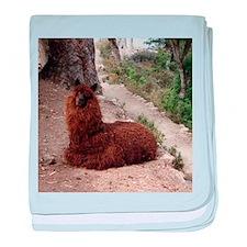 Funny Alpaca baby blanket