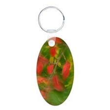 Fall Colors Keychains