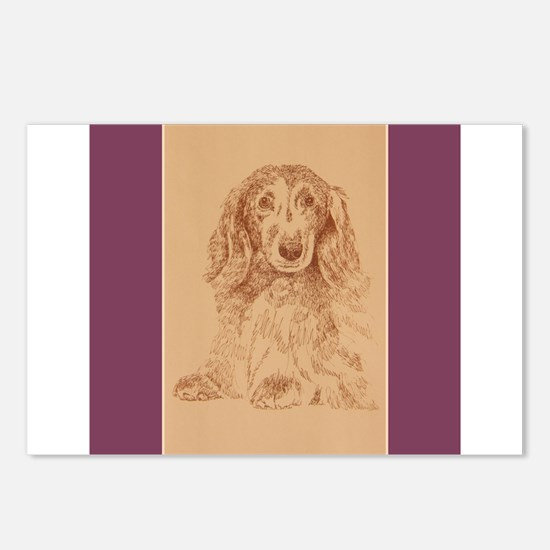 Longhaired Dachshund Postcards (Package of 8)
