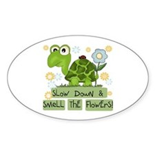 Turtle Slow Down Decal