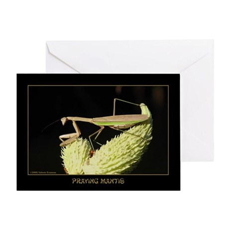 Praying Mantis & Seed Pods Greeting Card
