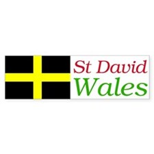 St David's Bumber Bumper Sticker
