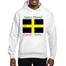Funny Saint Jumper Hoody