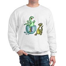 1st Birthday Sweatshirt