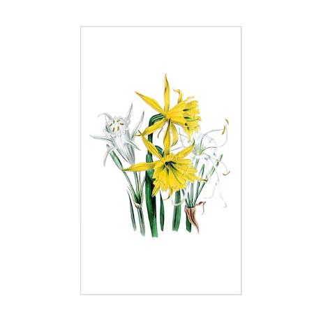 Daffodil Rectangle Sticker
