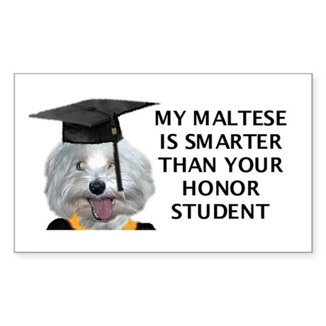My Maltese is smarter than Rectangle Sticker