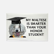 Cute My dog is cuter than your honor student Rectangle Magnet