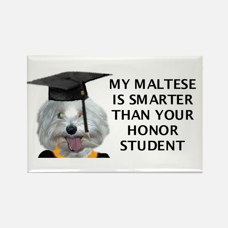 Cute My shih tzu is smarter than your honor student Rectangle Magnet
