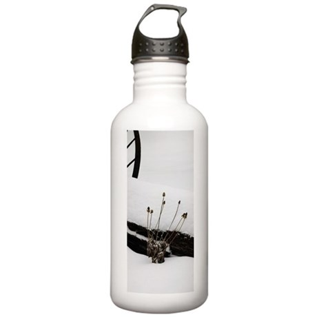 Snow Daze in West Tennessee Stainless Water Bottle